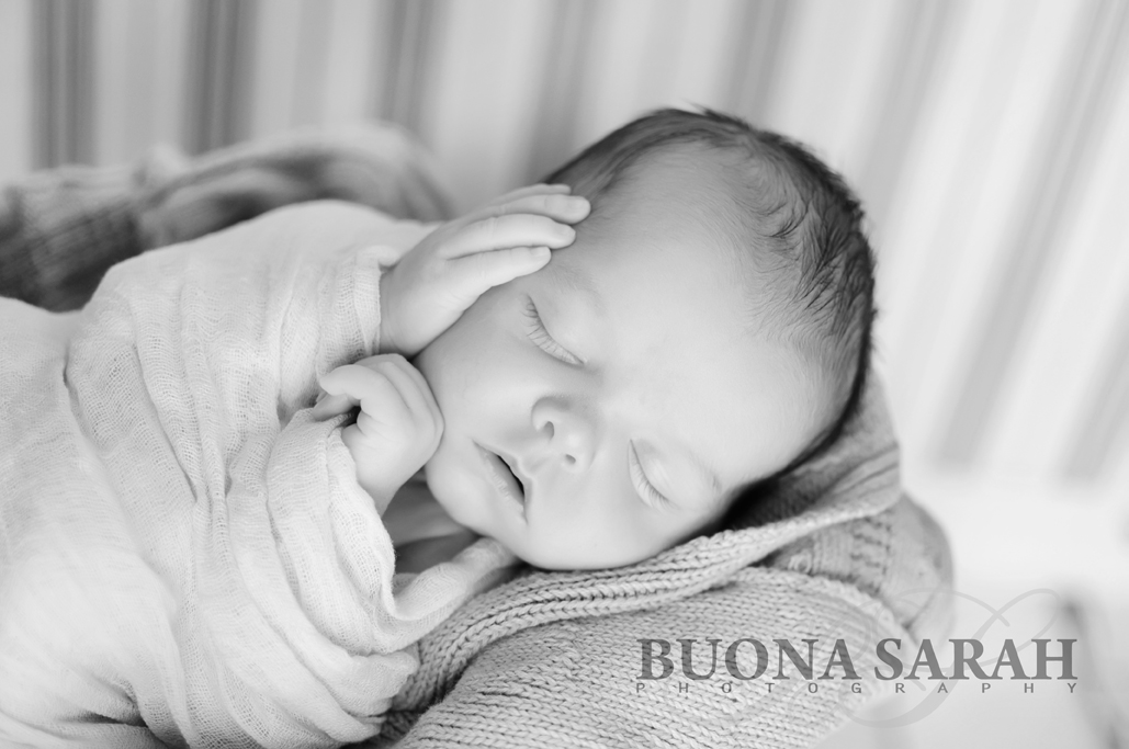 newborn portraits tulsa